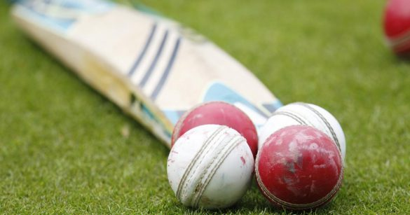 No more leather balls in cricket | Cricket News - Sports247live